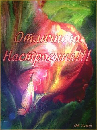 Анимация Бабочка на красном тюльпане в радужных бликах, Отличного Настроения, автор От Barkov (© Natalika), добавлено: 10.05.2015 08:23
