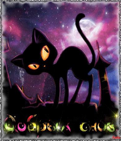 Анимация Мультяшный черный кот c яркими глазами гуляет по крыше ночью при луне, Добрых снов, автор Laila