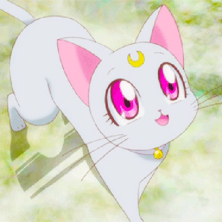 Анимация Маленький котенок мяукает (© zmeiy), добавлено: 13.05.2015 21:05