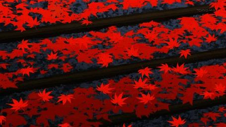 Анимация Падающие осенние листья (© zmeiy), добавлено: 14.05.2015 09:04
