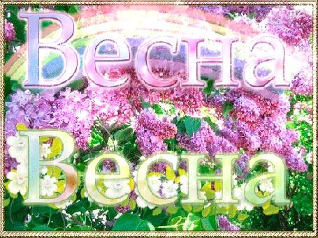 Анимация Куст сирени в солнечной радуге, Весна, Весна (© Natalika), добавлено: 14.05.2015 10:01