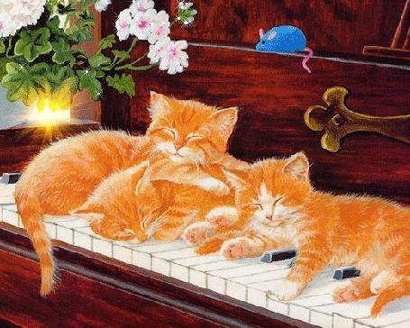 Анимация Трое рыжих котят спят на клавишах пианино, над ними сидит механическая голубая мышь и стоит горшок с цветами
