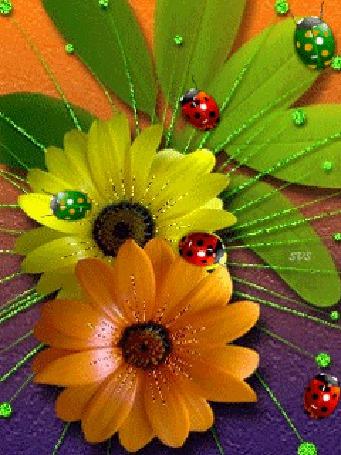 Анимация Разноцветные божьи коровки ползают на цветных ромашках