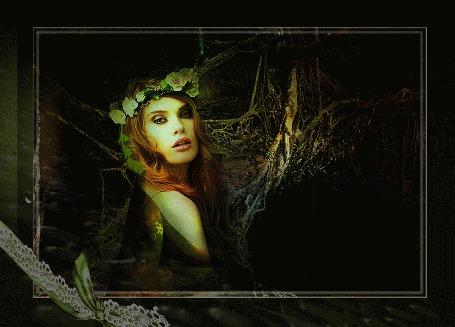 Анимация Картина, на которой изображена девушка в венке из светлых цветов, в прозрачной накидке, уходящая в темный лес, где мостом сплелись ветви деревьев. В левом углу рамы картина перехвачена кружевной лентой и бантом. Вода с картины переливается на раму. Изменяется освещение всей сцены (© shavaardan), добавлено: 17.05.2015 15:04
