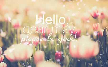 Анимация Надпись на фоне нежно-розовых тюльпанов (Hello dear may, please be good / Привет дорогой май, пожалуйста, будь хорошим) (© Seona), добавлено: 18.05.2015 11:19