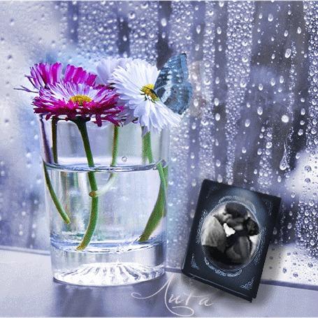 Анимация За окном идет дождь, на подоконнике стоит бокал с цветами и бабочкой и книга с целующейся парой на обложке