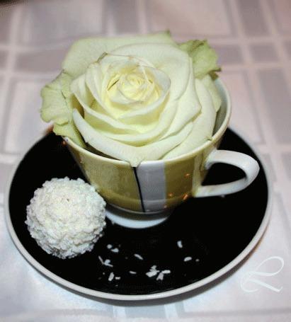 Анимация На столе стоит блюдечко и чашка, в которой лежит цветок белой розы, рядом лежит пирожное (© Svetlana), добавлено: 22.05.2015 14:49