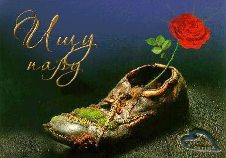 Анимация Красная роза в рваном старом башмаке, Ищу пару, a-zarina