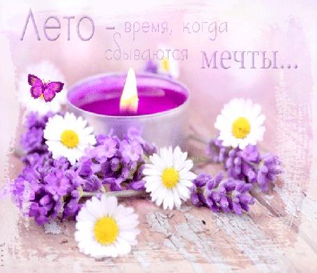 Анимация Сиреневая свеча среди цветов и бабочки, Лето - время, когда сбываются мечты. , Лилия (© Natalika), добавлено: 23.05.2015 13:18