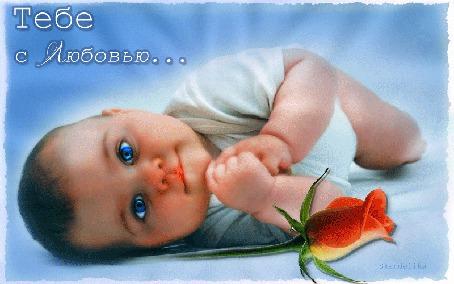 Анимация Мальчик ангелочек и красная роза. Тебе с любовью. Skandalika (© qalina), добавлено: 23.05.2015 17:39
