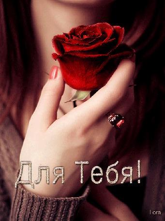 Анимация Девушка с красной розой в руках и с перстнем на пальце. Для Тебя! Lora