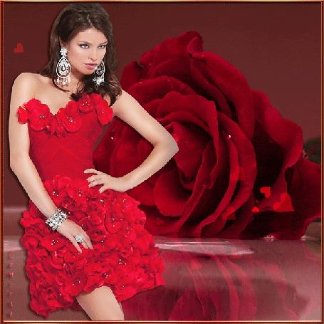 Анимация Девушка в красном платье на фоне красной розы