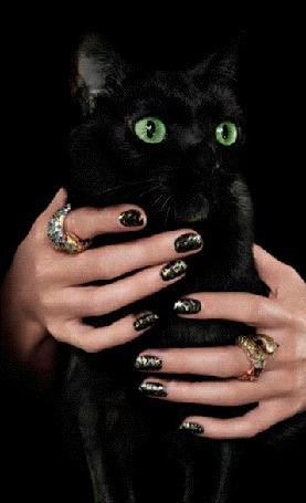 Анимация Женские руки с украшениями на пальцах, держат черную кошку с желтыми глазами (© Akela), добавлено: 24.05.2015 18:05