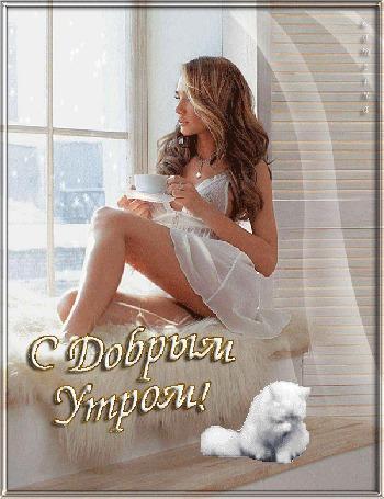 Анимация Девушка в неглиже сидит с чашкой на подоконнике, рядом умывается белый кот, С Добрым Утром, Lamerna