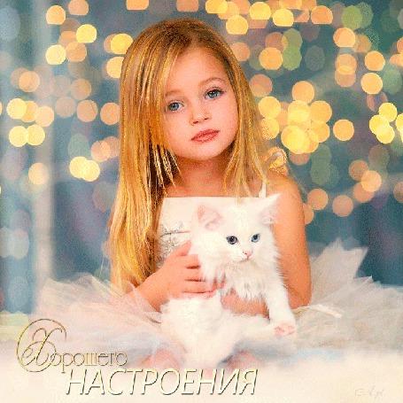 Анимация Девочка сидит в белом платье с белой кошкой на руках на размытом фоне огней, Хорошего настроения, A. pl