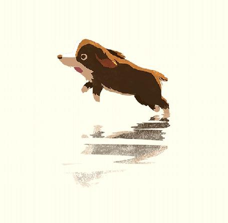 Анимация Собака бежит по воде (© chucha), добавлено: 26.05.2015 00:14