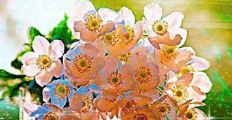 Анимация Ветка цветущего дерева (© Akela), добавлено: 26.05.2015 18:26