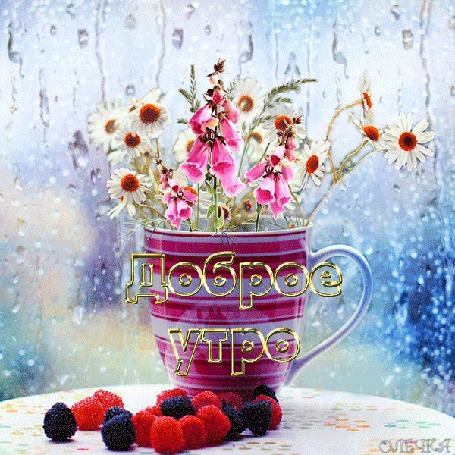 Анимация Ягоды на столе, цветы в кружке на размытом фоне дождя, Доброе утро, ОЛЕЧКА (© Natalika), добавлено: 27.05.2015 09:55