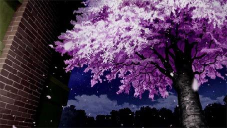 Анимация Медленно слетающие лепестки с цветущего дерева (© zmeiy), добавлено: 27.05.2015 13:32