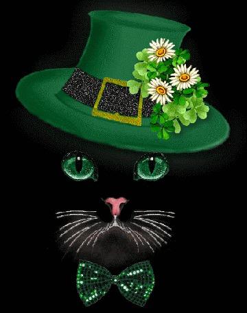 Тебе отличного, открытки шляпы блестящие