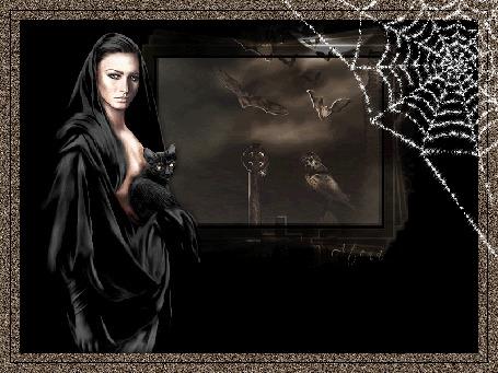 Анимация Девушка в черном с черным котом на руках, в правом углу блестящая паутина (© qalina), добавлено: 27.05.2015 21:03