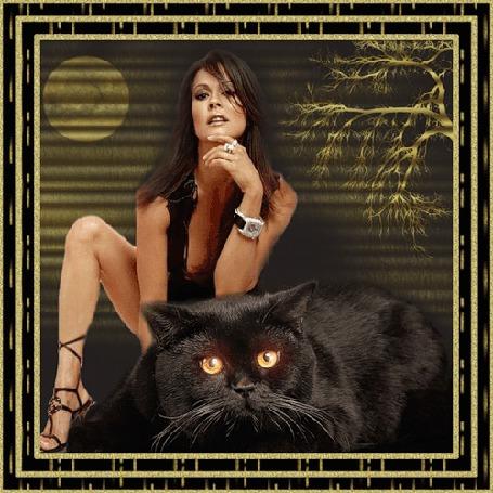 Анимация Девушка на фоне луны с черным котом и с часами на руке (© qalina), добавлено: 27.05.2015 21:49