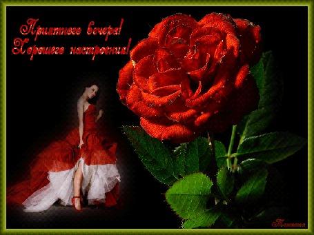 Анимация Девушка в красном на фоне красной розы с надписью Приятного вечера Хорошего настроения (© qalina), добавлено: 28.05.2015 19:26