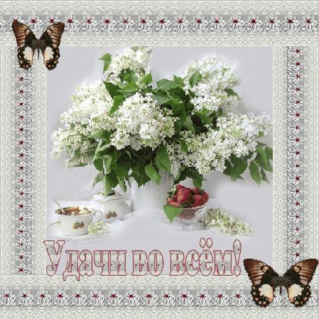 Анимация Белая сирень в вазочке клубника и чашечка с чаем на фоне бабочек с надписью удачи во всем