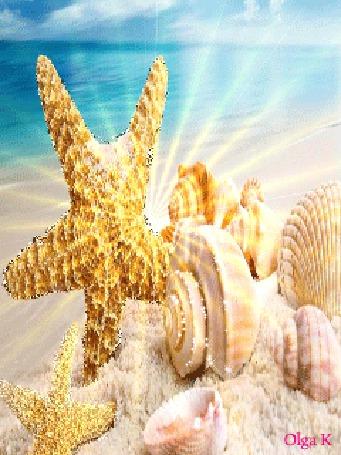 Анимация Морская звезда и ракушки на песке на фоне моря в солнечных лучах, Olga K (© Natalika), добавлено: 29.05.2015 18:47