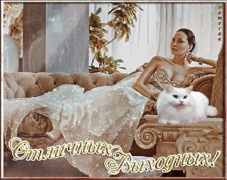 Анимация Девушка в золотом вечернем платье на диване рядом с белым котом в интерьере комнаты (Отличных Выходных!) Lamerna