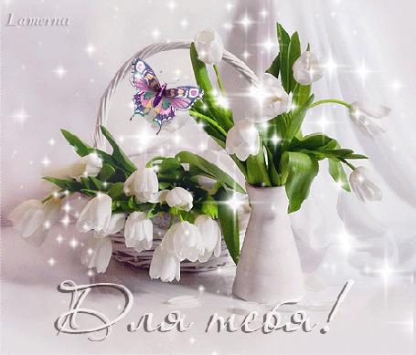 Анимация Белые тюльпаны в корзинке и вазе, с бабочкой на фоне белой ткани (Для тебя!), Lamerna