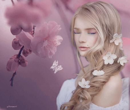 Анимация Девушка с длинными волосами, которые украшены белыми цветами, стоит около ветки черемухи, рядом летают бабочки (© Svetlana), добавлено: 31.05.2015 02:30