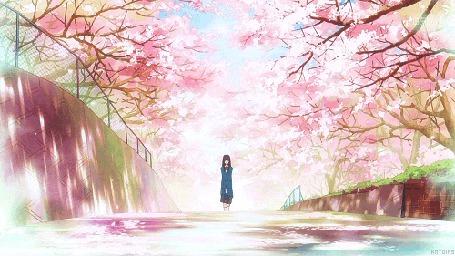 Анимация Куронума Савако / Kuronuma Sawako из аниме Kimi ni Todoke / Дотянуться до тебя (© chucha), добавлено: 02.06.2015 11:42