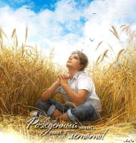 Анимация Парнишка сидит мечтает в поле с пшеницей на фоне неба, облаков и птиц (Рожденный мечтать может и летать!) АссОль