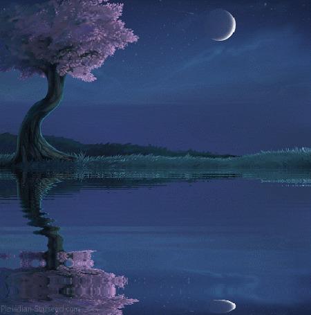 Анимация Весеннее дерево у воды и его отражение (© zmeiy), добавлено: 04.06.2015 09:52