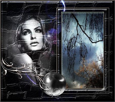 Анимация Фотография неба и деревьев, в кожаной рамке с изображением девушки, серебряной веткой и яблоком (© shavaardan), добавлено: 05.06.2015 02:02