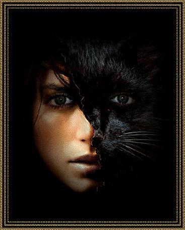 Анимация Девушка кошка на темном фоне (© qalina), добавлено: 06.06.2015 11:54