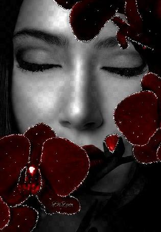 Анимация Девушка с красными цветами и зелеными глазами с надпись ДИЗОНА (© qalina), добавлено: 06.06.2015 19:16