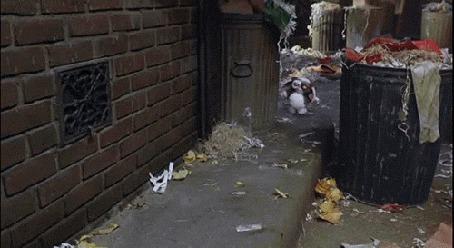 Анимация Шагающий по тротуару гремлин (© zmeiy), добавлено: 07.06.2015 22:31