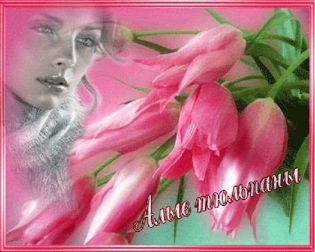 Анимация На розовом фоне девушка, тюльпаны, свечение картинки, (Алые тюльпаны) (© Valensia), добавлено: 08.06.2015 11:00