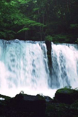 Анимация Водопад посреди леса (© Seona), добавлено: 09.06.2015 12:31
