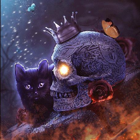 Анимация Черный котенок в окружении огня сидит возле черепа, на котором корона и бабочка