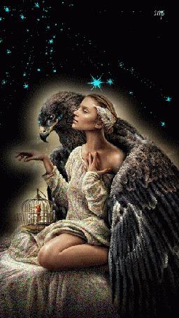 Анимация Огромный орел обнимает крылом женщину, у которой на колене стоит птичья клетка, на фоне звездного неба (© царица Томара), добавлено: 11.06.2015 16:50
