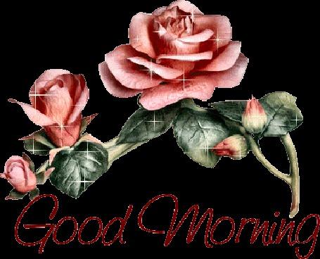 Анимация Розовые розы, Доброе утро. / Good Mornning (© qalina), добавлено: 12.06.2015 07:07