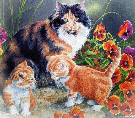Анимация Кошка с маленькими котятами гуляет в саду около цветов, на которых сидит бабочка