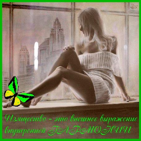 Анимация Белокура девушка сидит на подоконнике на фоне зданий бабочки / Изящество-это внешнее выражение внутренней гармонии/ (© qalina), добавлено: 13.06.2015 13:58