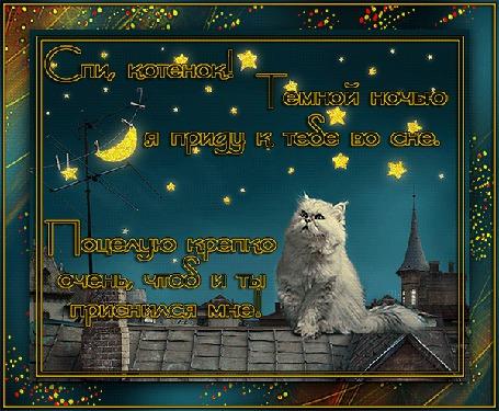 Анимация Белый кот сидит на крыше на фоне неба, луны, звезд (Спи, котенок! Темной ночью я приду к тебе во сне, Поцелую крепко очень, чтоб и ты приснился мне!) (© Natalika), добавлено: 17.06.2015 08:57