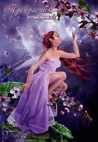 Анимация Эльфина в сиреневом платье сидит на цветущей ветке на сиреневом фоне (Прекрасных мгновений) /автор, a-zarina
