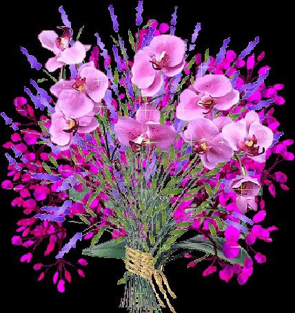 Анимация Букет сверкающих цветов (© Solnushko), добавлено: 17.06.2015 16:43