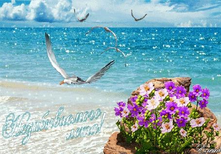 Анимация Чайки летают в небе над морем рядом с цветами (Незабываемого лета!) Елена (© Natalika), добавлено: 21.06.2015 12:00